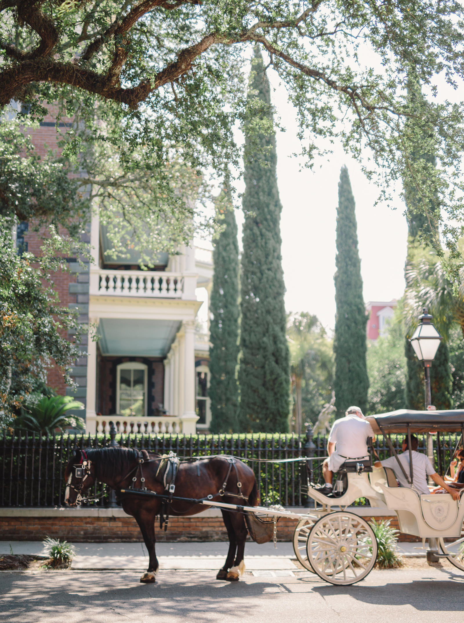 Lifestyle Photography | Atlanta, GA | A horse drawn carriage in a street.