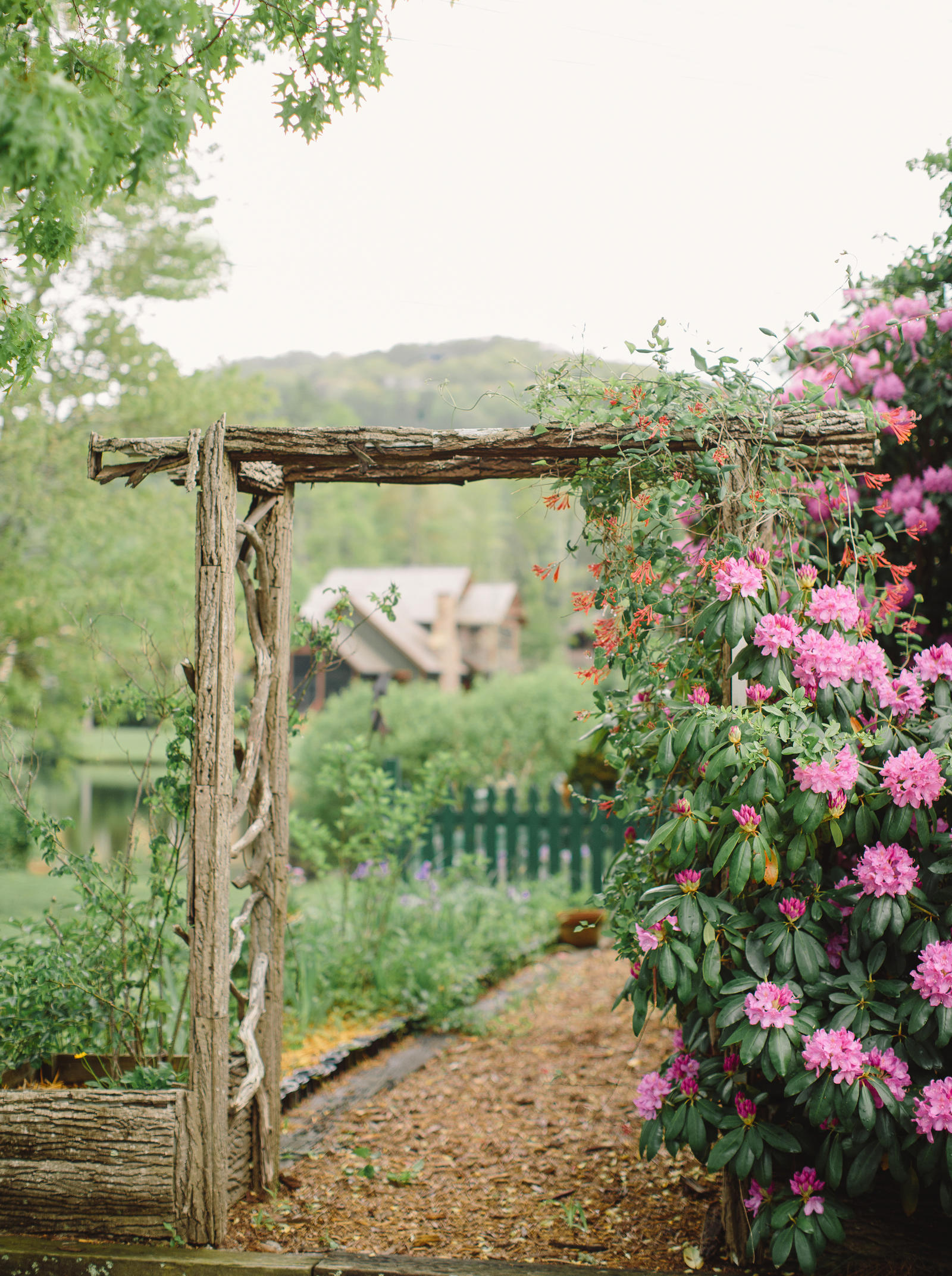 A rustic trellis stands at the entrance of a garden.